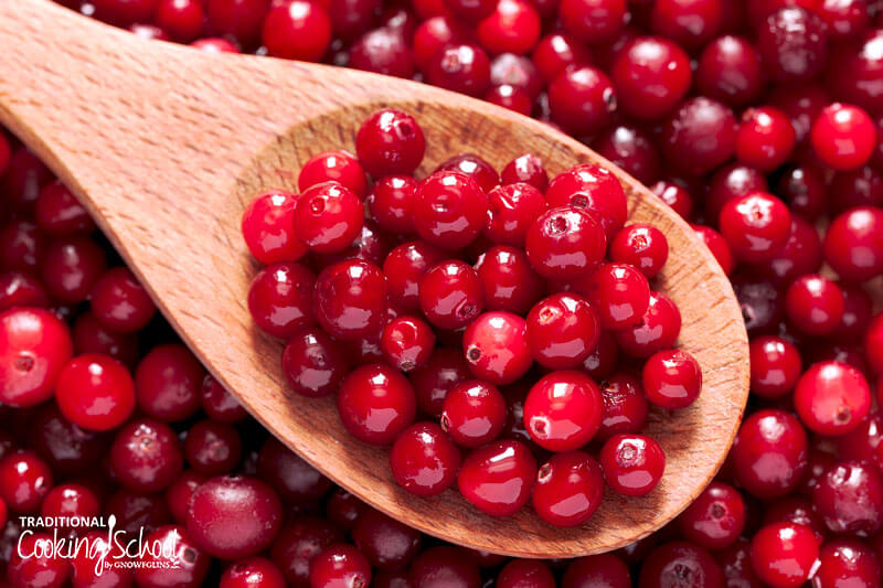 wooden spoon of fresh cranberries, on a background of cranberries