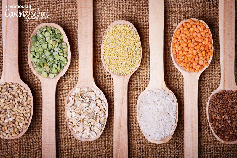 array of wooden spoons, each holding a grain or legume not allowed on the Autoimmune Protocol (AIP)