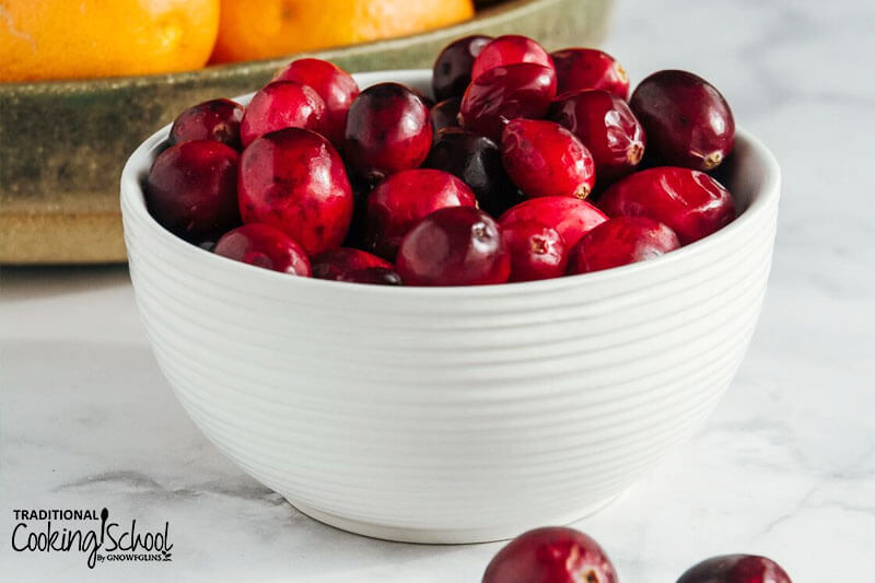 white ceramic bowl full of fresh cranberries
