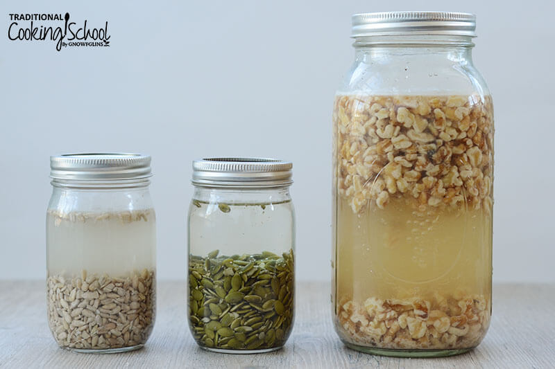 three glass Mason jars of soaking nuts and seeds, including sunflower seeds, pumpkin seeds, and walnuts