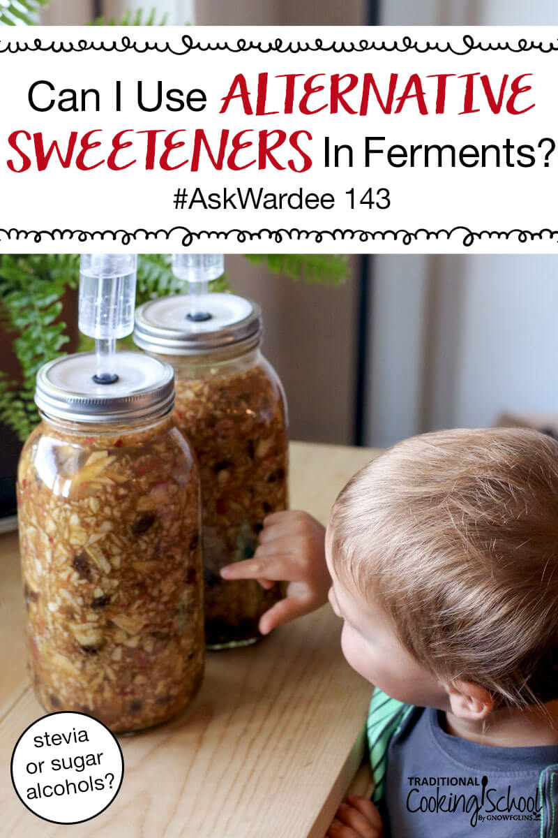 "toddler inspecting two half gallons jars of fermenting apple chutney, with text overlay: ""Can I Use Alternative Sweeteners In Ferments? #AskWardee 143 (stevia or sugar alcohols?)"""