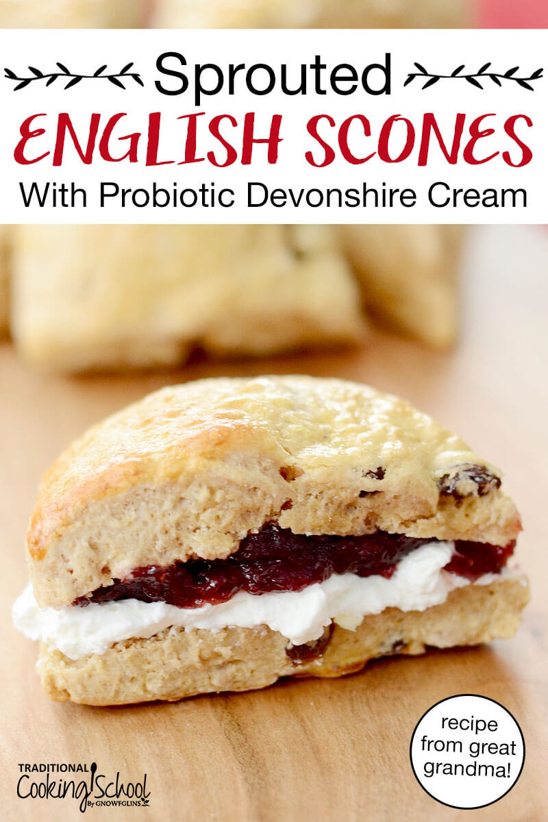 "traditional English scone wedge, spread with cream and jam in the middle, with text overlay: ""Sprouted English Scones With Probiotic Devonshire Cream (recipe from great grandma!)"""