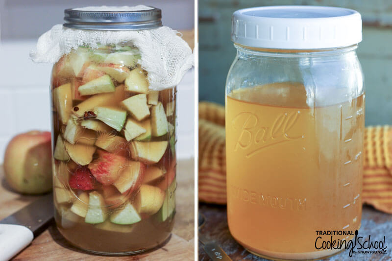 photo collage of homemade apple cider vinegar