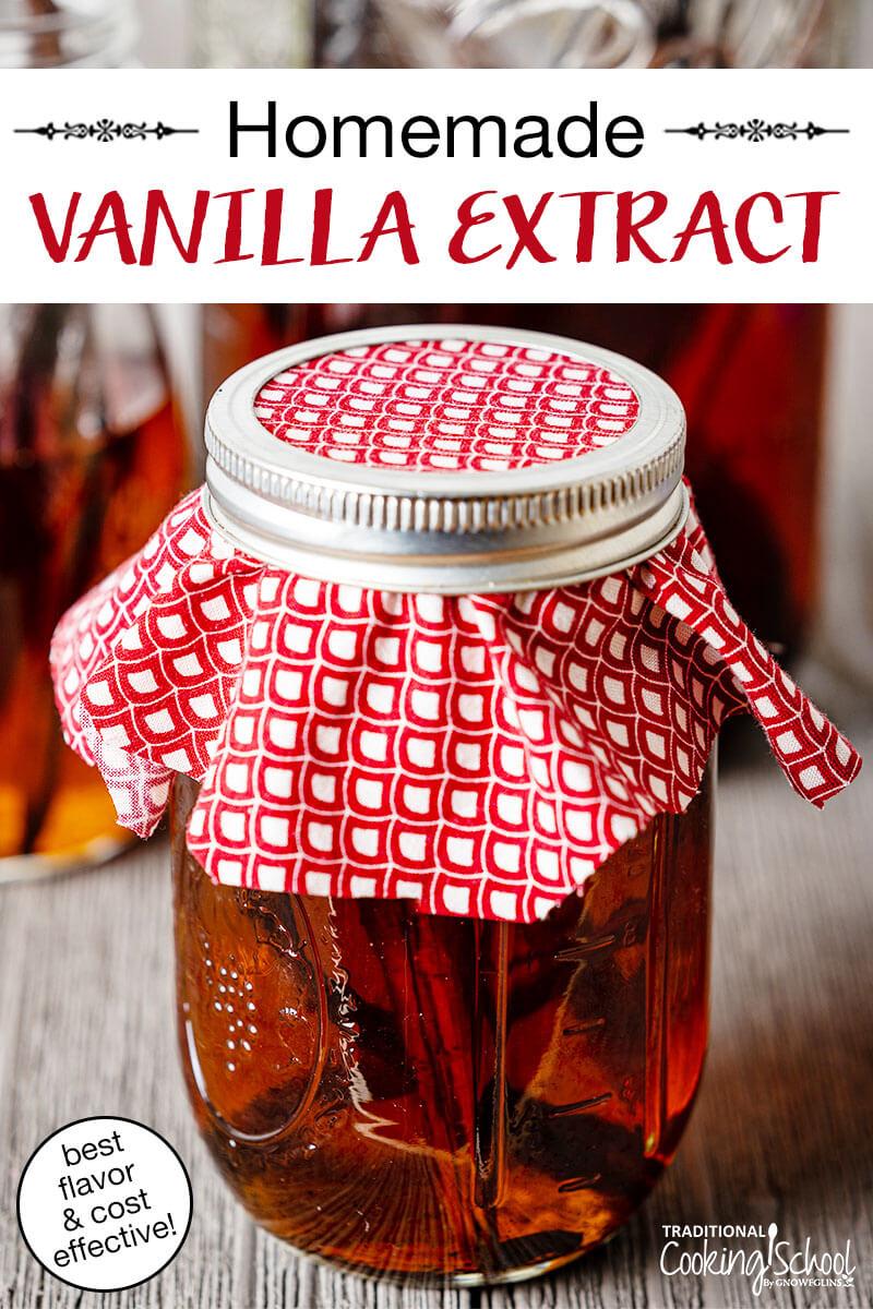Homemade Vanilla Extract Best Flavor Cost Effective
