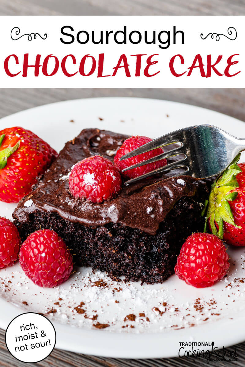 """A white plate with a piece of chocolate frosted chocolate cake topped with fresh raspberries and strawberries. Text overlay says, """"Sourdough Chocolate Cake: rich, moist & not sour!"""""""