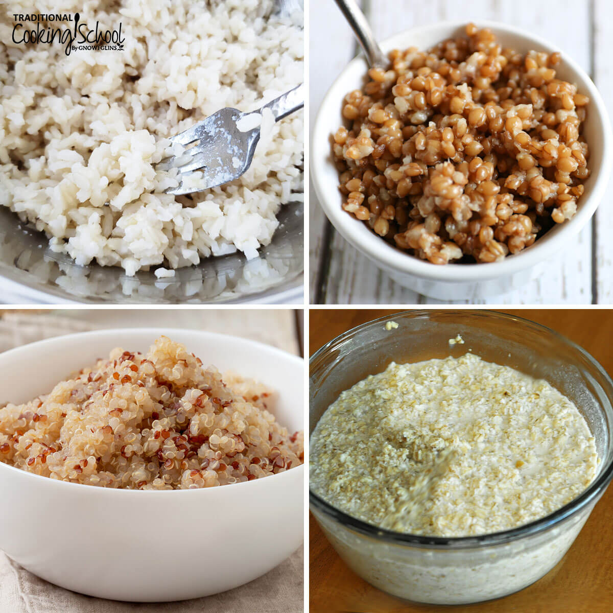 photo collage of different cooked grains for feeding sourdough (from top to bottom, left to right): rice, einkorn, quinoa, oats