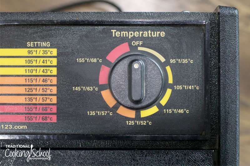 temperature dial on a food dehydrator