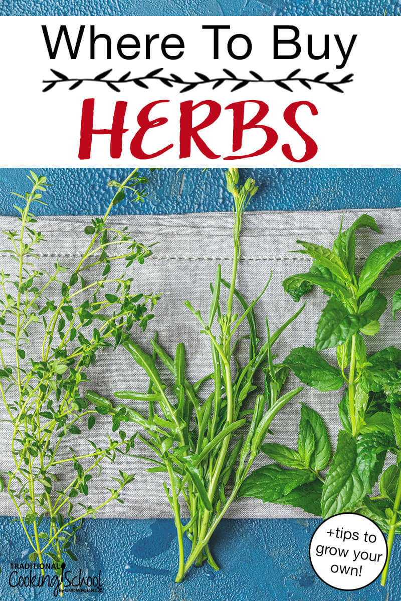 "fresh herbs on a gray tea towel with a blue background. Text overlay: ""Where To Buy Herbs +tips to grow your own!"""