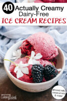 "bowl of vibrant pink, blackberry ice cream in a dish. Text overlay says: ""40 Actually Creamy Dairy-Free Ice Cream Recipes (almond milk, coconut milk, and more!)"""