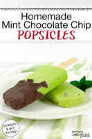 "bright green popsicles dipped in chocolate on a plate with text overlay: ""Homemade Mint Chocolate Chip Popsicles (probiotic & gut-friendly!)"""