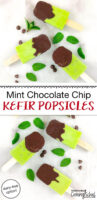 "bright green popsicles dipped in chocolate with text overlay: ""Mint Chocolate Chip Kefir Popsicles (dairy-free option!)"""