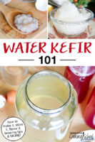 "photo collage of water kefir grains, brewing water kefir, and a water kefir granita. Text overlay says: ""Water Kefir 101 (how to make it, store it, flavor it, brewing tips & MORE!)"""