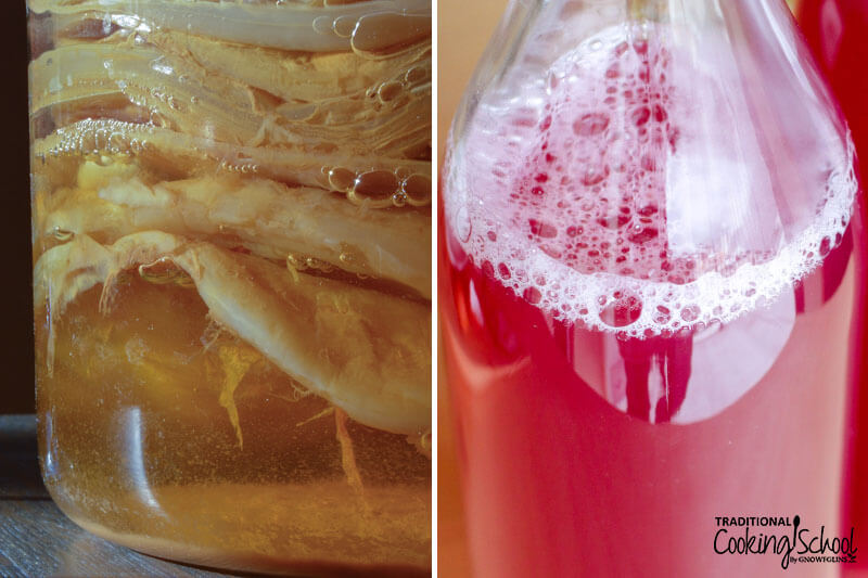 photo collage of Kombucha with SCOBY (pictured left) and bottled water kefir (pictured right)