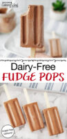"photo collage of chocolate popsicles with text overlay: ""Dairy-Free Fudge Pops (sugar-free options!)"""