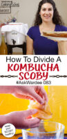 "photo collage of a smiling woman holding out a large SCOBY on a plate, and hands peeling apart a Kombucha SCOBY over a small bowl. Text overlay says: ""How To Divide A Kombucha SCOBY #AskWardee 083 (keep your SCOBY healthy!)"""