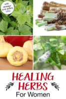 """Photo collage of herbs, including maca root, red raspberry leaf, and dong quai. Text overlay says: """"Healing Herbs For Women (with dosage and safety info!)"""""""