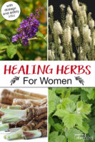 """Photo collage of herbs, including black cohosh, red raspberry leaf, and vitex. Text overlay says: """"Healing Herbs For Women (with dosage and safety info!)"""""""