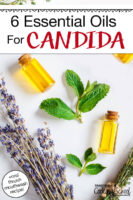 "Flatlay of lavender flowers and mint leaves interspersed with small bottles filled with oil. Text overlay says: ""6 Essential Oils For Candida (+oral thrush mouthwash recipe!)"""