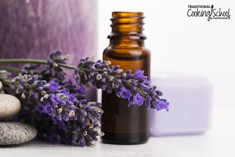 Lavender essential oil in a small bottle next to a few lavender blossoms.