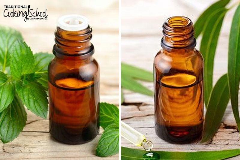 Photo collage of peppermint and eucalyptus essential oils.
