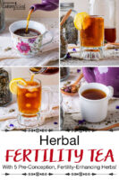 "Photo collage of a teapot pouring a glass of hot herbal tea; also pouring a glass of cold herbal infusion with a lemon slice. Text overlay says: ""Herbal Fertility Tea With 5 Pre-Conception, Fertility-Enhancing Herbs!"""