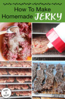 "Photo collage of making jerky: sprinkling spices on raw ground meat, jerky gun making strips of raw meat, raw meat strips on dehydrator trays, and finished jerky on dehydrator tray. Text overlay says: ""How To Make Homemade Jerky (with a kick!)"""