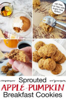 "Photo collage of making cookies: dry and wet ingredients in bowls, cookie scoop turning dough out onto tray, a plateful of cookies, and holding half a cookie up to show texture. Text overlay says: ""Sprouted Apple-Pumpkin Breakfast Cookies (oat-free, nut-free with sugar-free option)."""
