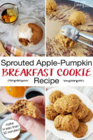 "Photo collage of making cookies: dry and wet ingredients in bowls, cookie scoop turning dough out onto tray, a plateful of cookies, and holding half a cookie up to show texture. Text overlay says: ""Sprouted Apple-Pumpkin Breakfast Cookie Recipe (make in less than 30 minutes!)"""