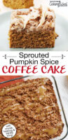 "Photo collage of coffee cake with a caramel-colored drizzle. Text overlay says: ""Sprouted Pumpkin Spice Coffee Cake (with crumb topping & vanilla icing!)"""