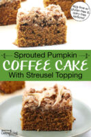 "Photo collage of slices of coffee cake. Text overlay says: ""Sprouted Pumpkin Coffee Cake With Streusel Topping (egg-free with gluten-free & dairy-free options)"""