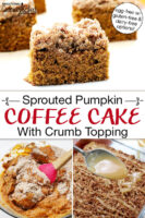 "Photo collage of coffee cake: mixing together ingredients in a bowl, drizzling cake with vanilla icing, and a slice of cake on a plate. Text overlay says: ""Sprouted Pumpkin Coffee Cake With Crumb Topping (egg-free with gluten-free & dairy-free options)"""