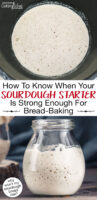 "Photo collage of bubbly sourdough starter. Text overlay says: ""How To Know When Your Sourdough Starter Is Strong Enough For Bread-Baking (why won't my sourdough bread rise?)"""