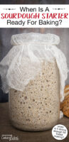 "Bubbly sourdough starter in a large jar covered with gauze. Text overlay says: ""When Is A Sourdough Starter Ready For Baking? (when is it strong enough for bread making?)"""