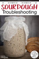 "Bubbly sourdough starter in a large jar covered with gauze. Text overlay says: ""Sourdough Troubleshooting (when is it strong enough for bread making?)"""