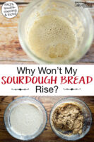 "Photo collage of bubbly sourdough starter and sourdough batter in a bowl. Text overlay says: ""Why Won't My Sourdough Bread Rise? (FAQs, troubleshooting & tricks)"""