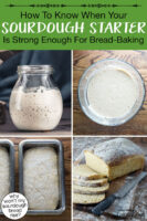 "Photo collage of bubbly sourdough starter, bread dough in loaf pans ready to be baked, and freshly baked, sliced bread. Text overlay says: ""How To Know When Your Sourdough Starter Is Strong Enough For Bread-Baking (why won't my sourdough bread rise?)"""
