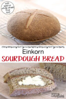 "Photo collage of sourdough bread cooling, and slices of the finished loaf (one is buttered). Text overlay says: ""Einkorn Sourdough Bread (with spelt or whole wheat flour too)"""