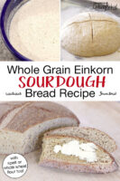 "Photo collage of sourdough starter, a loaf of sourdough bread rising, and a buttered slice. Text overlay says: ""Whole Grain Einkorn Sourdough Bread Recipe (with spelt or whole wheat flour too!)"""