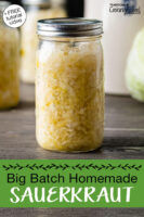 "Sauerkraut in a glass jar. Text overlay says: ""Big Batch Homemade Sauerkraut (+FREE tutorial video!)"""