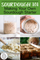 "Photo collage of bubbly sourdough starter in a glass jar, mixing together a dough, and sourdough cinnamon rolls. Text overlay says: ""Sourdough 101: Making Your Own Sourdough Starter (from scratch with only flour and water!)"""