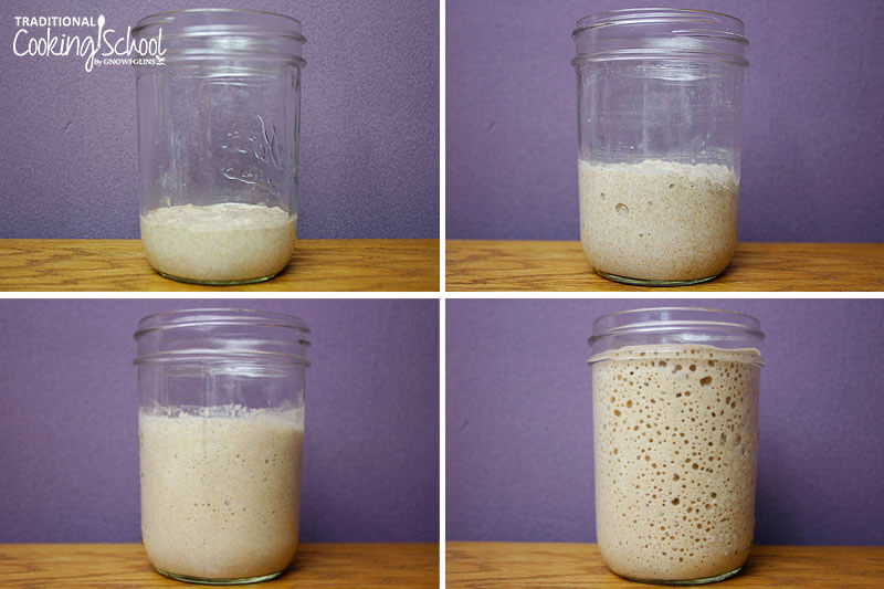 Photo collage of making your own sourdough starter: 1) flour and water combined in a glass jar, no activity 2) a few bubbles 3) more bubbles 4) sourdough starter has filled jar to the brim, very bubbly
