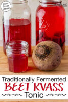 """Whole beet next to a small jar of finished beet kvass ready for drinking. Two half gallon jars of beet kvass are in the background. Text overlay says: """"Traditionally Fermented Beet Kvass Tonic (plus flavor ideas!)"""""""