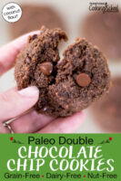 """Close-up shot of a chocolate cookie broken in two to show the soft texture. Text overlay says: """"Paleo Double Chocolate Chip Cookies: Grain-Free Dairy-Free Nut-Free (with coconut flour)"""""""