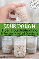 """Photo collage of small glass jars of sourdough starter. Text overlay says: """"Sourdough Tips, Troubleshooting & Frequently Asked Questions (caring for, feeding, reviving your starter & more!)"""""""