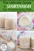 """Photo collage of small glass jars of sourdough starter. Text overlay says: """"The Ultimate Guide To Sourdough: Tips, Troubleshooting, FAQs (answers to your burning questions!)"""""""