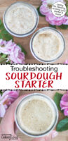 """Photo collage of small glass jars of sourdough starter. Text overlay says: """"Troubleshooting Sourdough Starter (caring for, feeding, reviving your starter & more!)"""""""