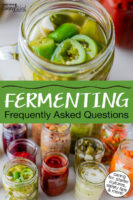 """Photo collage of jars of a wide variety of homemade ferments. Text overlay says: """"Fermenting Frequently Asked Questions (caring for, starter cultures, safety tips & more!)"""""""