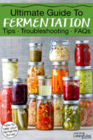 """Wide variety of colorful ferments in glass jars. Text overlay says: """"Ultimate Guide To Fermentation: Tips, Troubleshooting, FAQs (how to help your ferments thrive!)"""""""