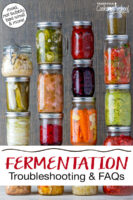 """Wide variety of colorful ferments in glass jars. Text overlay says: """"Fermentation Troubleshooting & FAQs (mold, not bubbly, bad smell & more!)"""""""