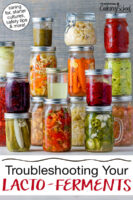 """Wide variety of colorful ferments in glass jars. Text overlay says: """"Fermentation Troubleshooting & FAQs (caring for, starter cultures, safety tips & more!)"""""""